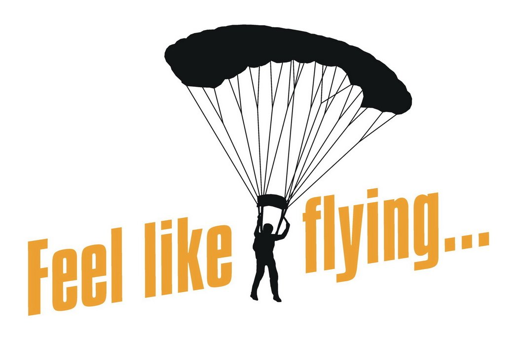 logo Feel like flying...